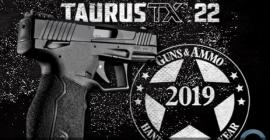 LRCA Consulting - O turnaround da Taurus Armas