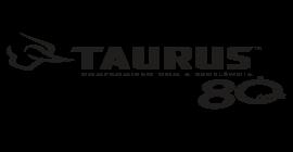 """Ações da Taurus vão operar na B3 sob o novo código """"TASA"""""""
